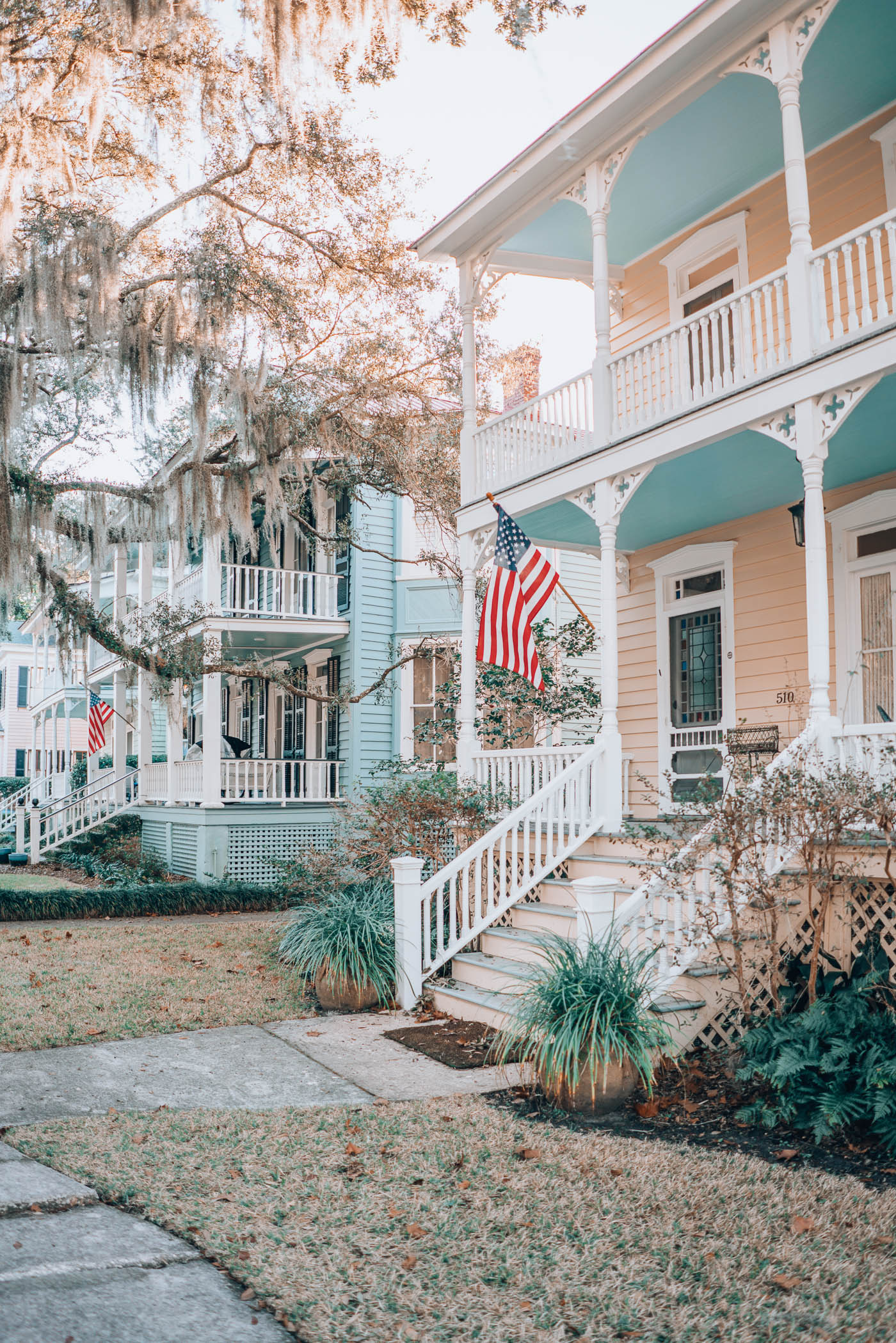 Exploring The Lowcountry